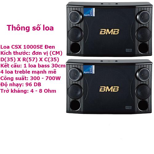 Loa karaoke CSX 1000SE